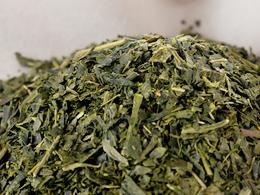 お茶の抗菌作用